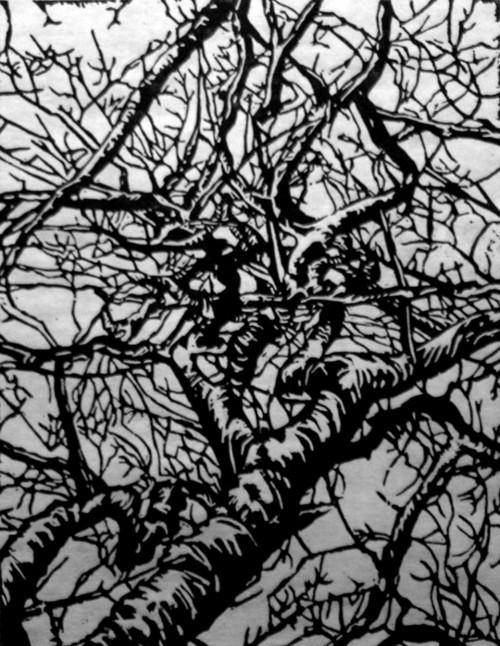 Tree (Linocut)